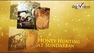 Honey collecting in the Sundarbans is a risky businessFor generations poor fishermen and villagers around Bangladesh's Sundarbans, the largest mangrove forests in the world, have been collecting wild honey from April to June every year.On average, the fishermen earn around $70 to $80 (£42 to £49) each during the season.They use the extra money to repay their debts or to repair their boats.Honey gathering may sound like a normal rural occupation but here it is perhaps the most dangerous job in the world.