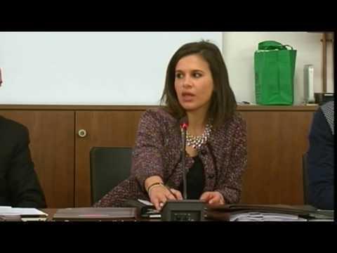 ANDORA : CONSIGLIO COMUNALE DI VENERDI 3 FEBBRAIO 2017