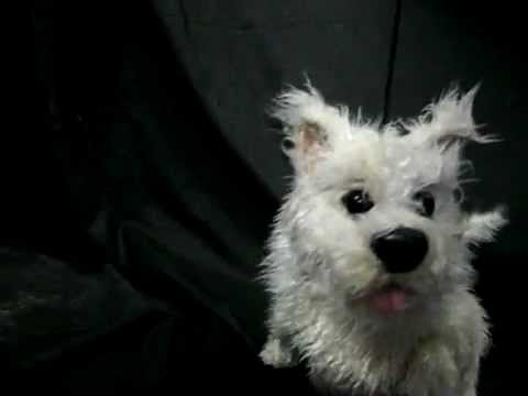 Toto Rod Puppet, Features