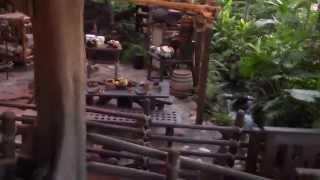 Climb to the Top of Swiss Family Robinson Treehouse - Magic Kingdom - Walt Disney World.