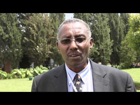 Knowledge management and capacity building in the IPMS project