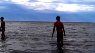 Ромашка, лето 2014 (видео №18)