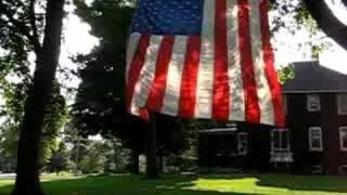 Dixon (IL) United States  City pictures : Waving American Flag in the Tree Dixon Illinois