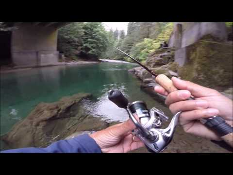 trout fishing with powerbait on a river bank