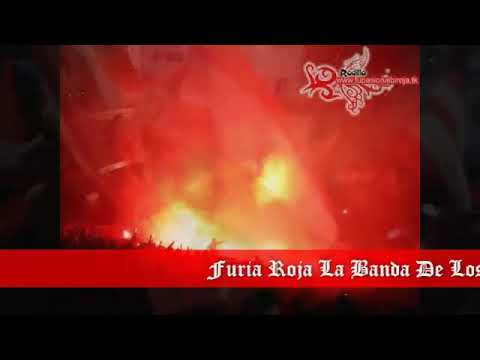 Furia Roja Ambato - Furia Roja - Técnico Universitario