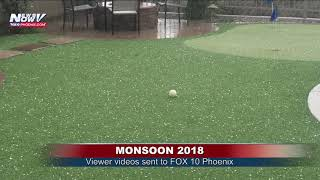 FOX 10 XTRA NEWS AT 7: Viewer videos as monsoon storms roll through the Valley
