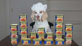 Dog Cooks with Spam: Funny Chef Dog Maymo by Maymo