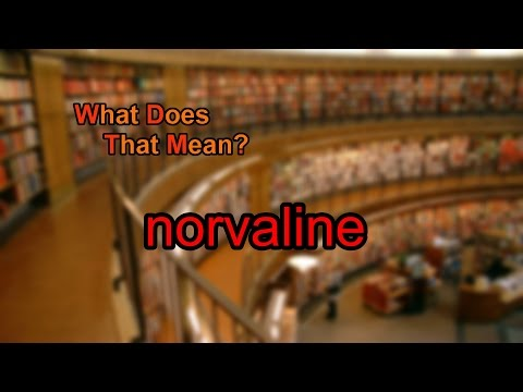 What does norvaline mean?