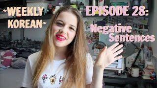 Episode 28: Negative Sentences!