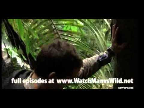 Man vs. Wild (2011.03.10) - Borneo Jungle Season 5 Episode 10 (2 of 3)