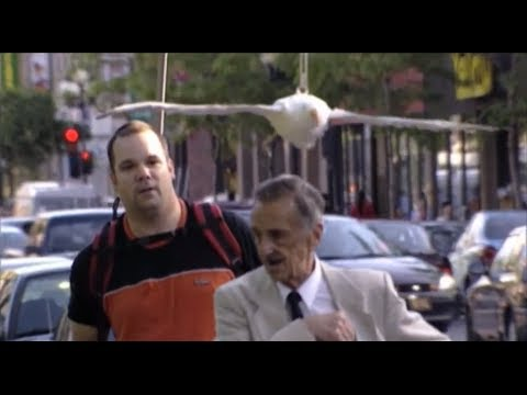 Video Throwback Thursday - Bird Poop Attack Prank download in MP3, 3GP, MP4, WEBM, AVI, FLV January 2017