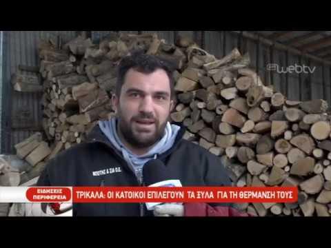 Τα ξύλα επιλέγουν για θέρμανση στα Τρίκαλα | 11/01/2019 | ΕΡΤ