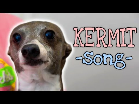 a song for kermit