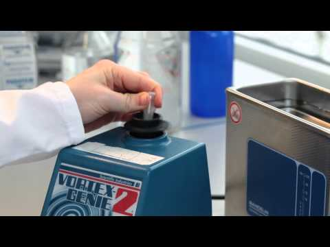 Sample Preparation for ZEISS Lightsheet Z.1