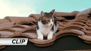 Nonton The Spy Next Door  2010     Cat  Film Subtitle Indonesia Streaming Movie Download