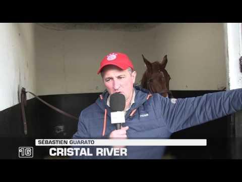 Quinté lundi 20/02 : « Cristal River (16) doit être économisé »