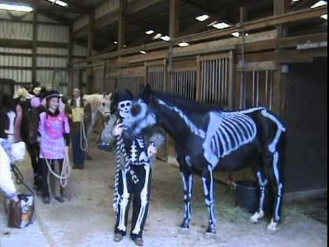 Halloween Horse Skeleton