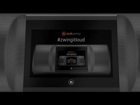 Auris Zwing