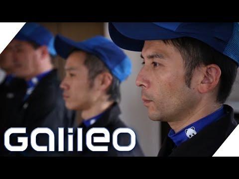 Der perfekte Umzug - Japans professionelle Umzugsmeister | Galileo | ProSieben
