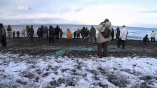 Wild Alaska english Documentary National Geographic Wild Part 3