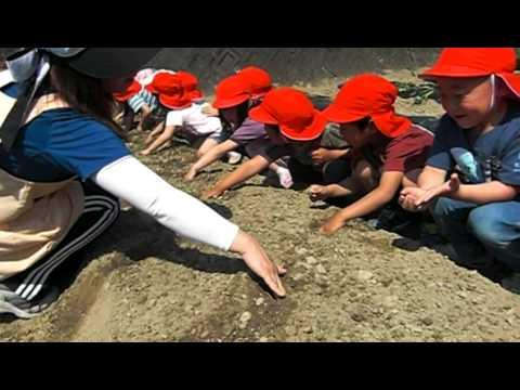 Ashiro Kindergarten
