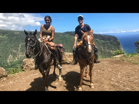 Hawaii's MOST Scenic Place - Horseback Riding the Waipio Valley Rim 🏞  (DJi Mavic)