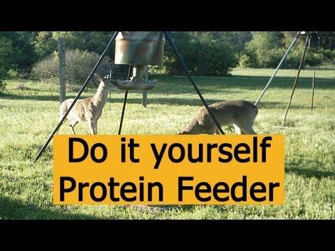 DIY Gravity Deer Feeder – TexasNative00