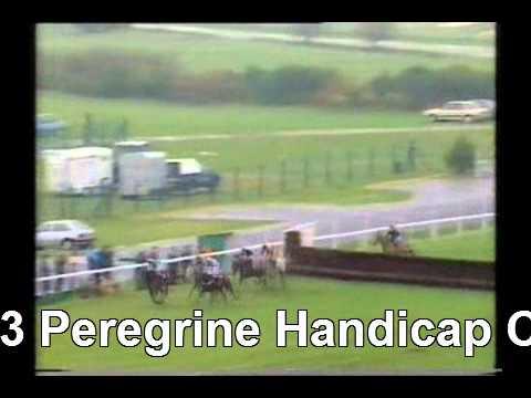 Calapaez Horse Racing 1993 Peregrine Hcp Chase Ascot FULL RACE