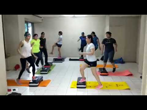 Stepper Workout By Sandy's Fitness Club