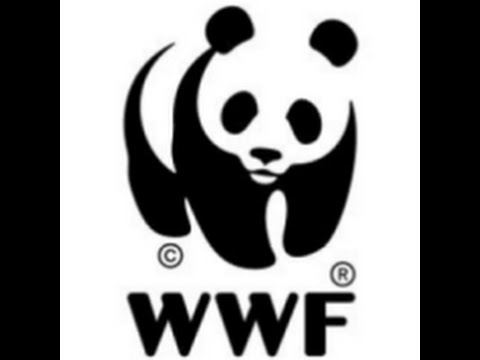 WWF video on Clique Solar at Climate Solver Awards 2013