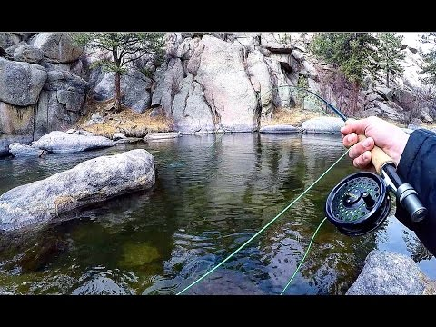 Fly Fishing for Trout in the Mountains (видео)