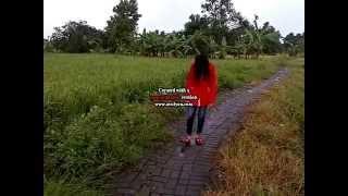 Nonton Boneka Setan Film Subtitle Indonesia Streaming Movie Download