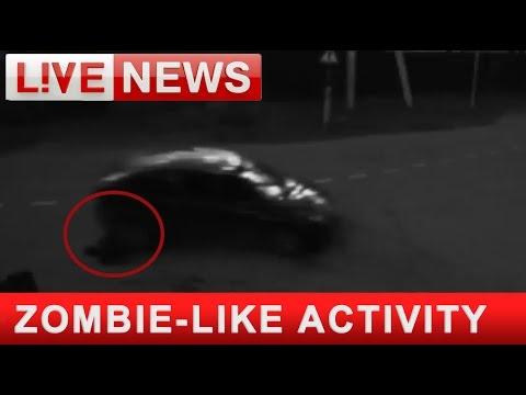 Сбитый пешеход отомстил водителю