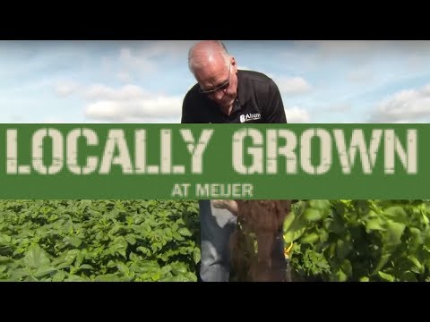 Meijer Locally Grown: Alsum Farms & Produce