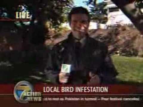 Bird Poops in Mouth of Reporter! Hilarious!!