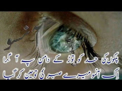 Cute quotes - Best Urdu Qoute Life  Urdu Qoute  Beautifull Islamic Quotes Status   Inspiring Quotes