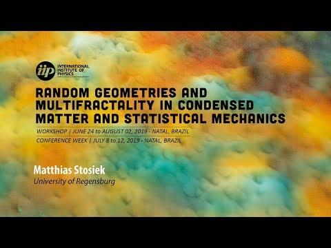 Self-consistent-field ensembles of disordered Hamiltonians (...) - Matthias Stosiek