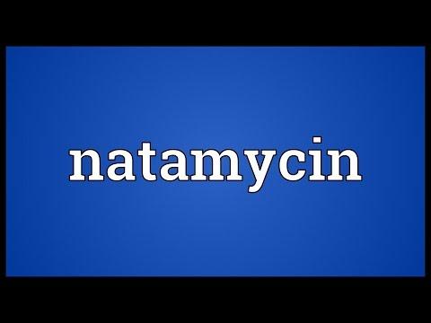Natamycin Meaning