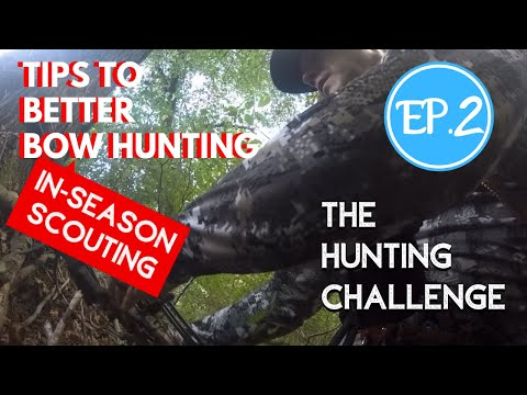 Tips To Better Bow Hunting - In Season Scouting- Ep. 2