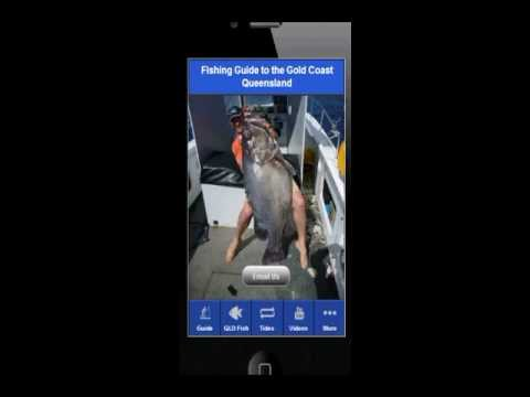 Video of Guide to Fishing Gold Coast