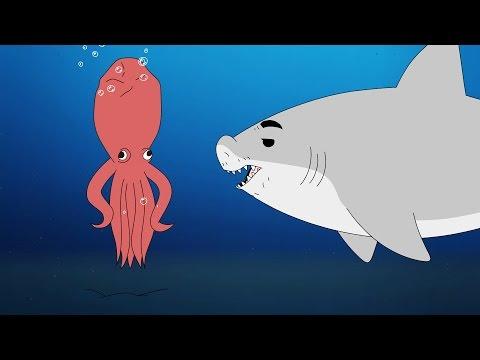 WATCH: Shark Wahlberg