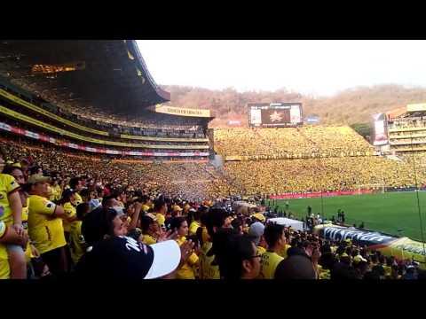 Barcelona 3 vs Aucas 3 2016 - Sur Oscura - Barcelona Sporting Club