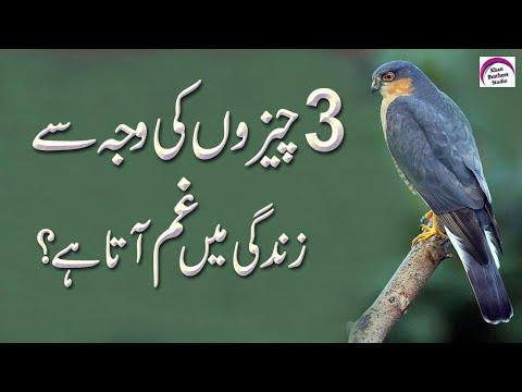 3 Cheezon Se Gham Aata Hai (Grief Comes from Three Things) Rj Faizan Khan   Grief  Things   Come