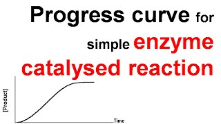 Progress curve of simple enzyme catalyzed reaction