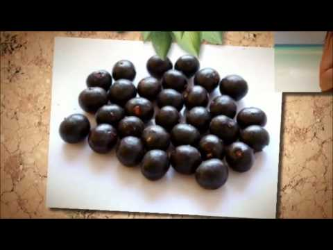 Acai Berry Cleanse Diet Tips