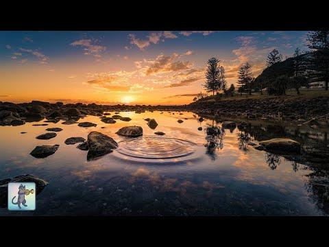 Amazing Nature Scenery: Sunrise & Sunsets