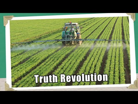 Truth Revolution - Mental & Physical Health