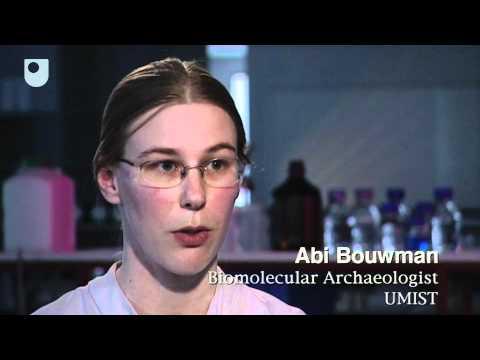 Extraktion von DNA aus alten Knochen - Auf der Suche nach Syphilis (3/6)