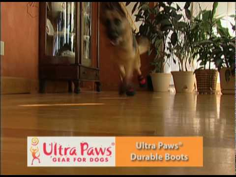 No Slipping With Ultra Paws Dog Boots