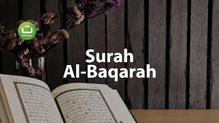 Video Juz 1 Surah Al Baqarah سورة البقرة - Abu Usamah ᴴᴰ MP3, 3GP, MP4, WEBM, AVI, FLV November 2018